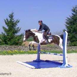 Überbauter Wassergraben für Pferde